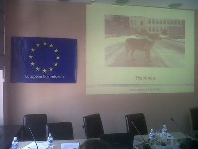 The Institute at the multi-beneficiary TAIEX workshop on stray animals in Belgrade